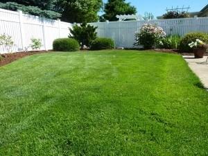 Garten mit Rasen und Mulchbereiche